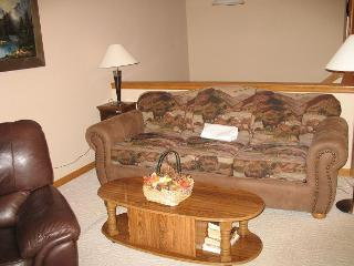 LR85L Lovely Townhouse w/Fireplace, Wifi, Common Hot Tub, Garage, Dillon