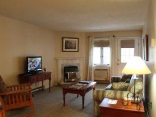 Spacious 1BR condo with balcony, fireplace 235C, Lincoln