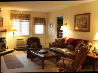 Convenient 2BR condo with fireplace, TV/DVD - B1 126B, Lincoln