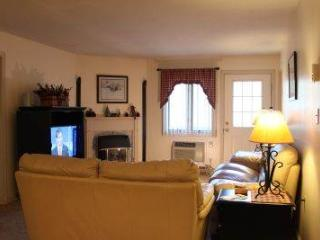 2BR condo with balcony, breakfast bar - B2 217A, Lincoln