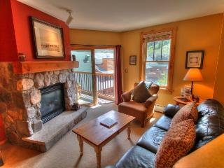 8401 Buffalo Lodge - River Run, Keystone
