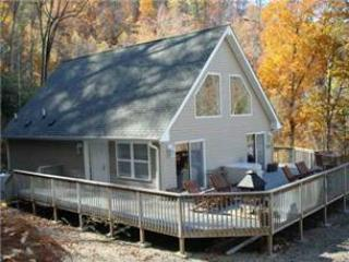 Birds Nest - Bryson City vacation rentals