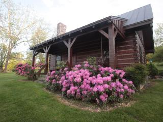Virginia Log cabin in spring