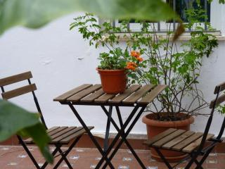 Charming and cozy  1 bedroom apartment in the historic centre with a shared Courtyard. WIFI, Seville