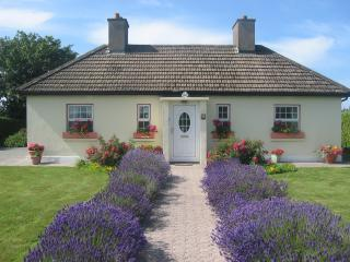 Yellow Shell Cottage Self Catering, Dungarvan