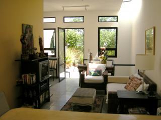 Charming Casita in Historic Centro - San Miguel de Allende vacation rentals