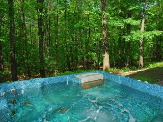 Delightful 3 Bedroom Mountain home with hot tub in private wooded setting!, Oakland
