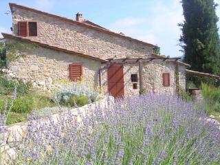 the Fienile cottage with lavender