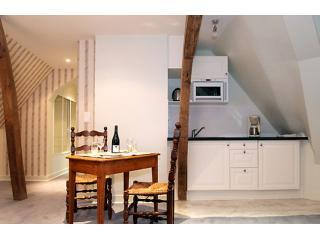 Tower Suite: 4BR Apt in the Chateau des Sablons, Bourgueil