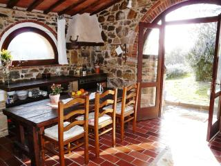 Podere Patrignone - a Tuscan cottage with views, Castellina In Chianti