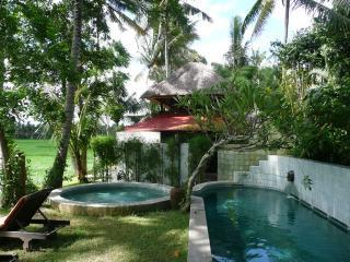 Damai: beautiful house on rice fields in Ubud Bali