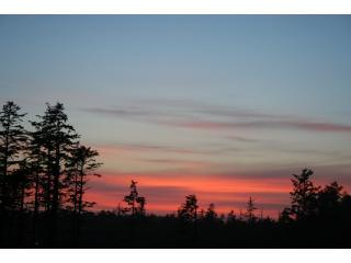 Gorgeous and serene Ucluelet sunsets