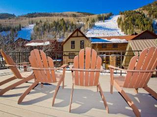Cimarron Lodge #36 - Telluride vacation rentals