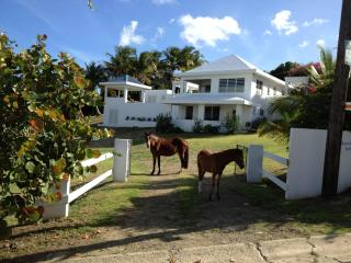 Bravos House Vieques Waterview Villa with Pool, Isla de Vieques