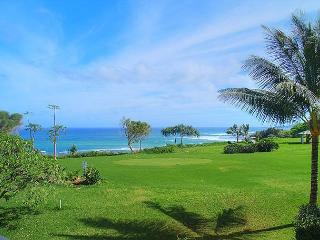 Kamahana 24: Great view and great price!  Near beach paths and golf., Princeville