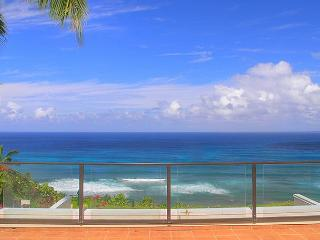Puu Poa 401: oceanfront luxury with a/c, Bali Hai views and complete privacy, Princeville