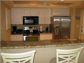 2BR Gulf side, painted mural, TV/VCR #301GS, Sarasota