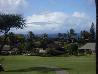 GC164- Ocean Views, Beach Gear. Remodeled, Wailea
