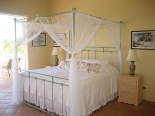 The Bougainvillea Suite, with king size bed and ensuite bath, steps away from the terrace level pool