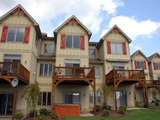 Amazing townhome with stunning lake and ski slope views!, McHenry