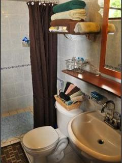 One of 4 bathrooms, fully equipped with shampoos, soaps, towels, hairdryer,etc.