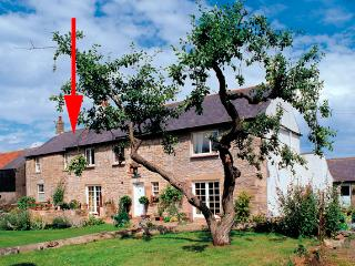 ROCK MILL COTTAGE, family friendly, character holiday cottage, with a garden in Embleton, Ref 1153