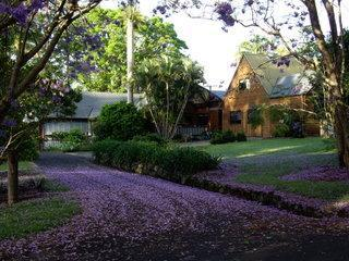 Approaching Kurrawong - Byron Bay Hinterland farmhouse and separate studio - Federal - rentals