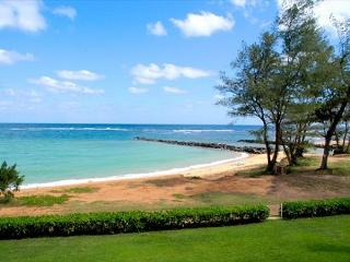 Oceanfront air-conditioned and newly remodeled.   Perfect for whale-watching!, Kapaa