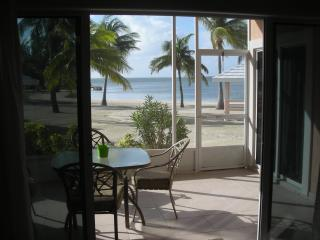Beachfront,Step from Your Porch Onto the Sand, Grand Cayman