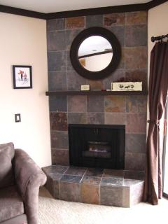 fireplace runs with a click of a switch