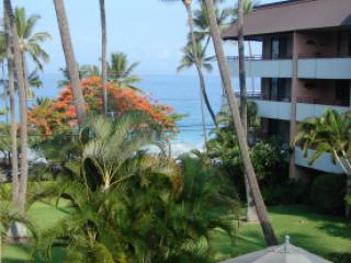 70 steps to Boogie Board and Snorkeling 2BR/2BA, Kailua-Kona