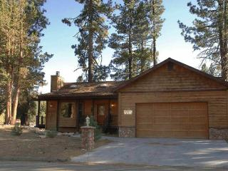 Can't Bear to Leave  #1156, Big Bear Region