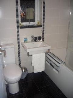 Gorgeous Bathroom with Shower over Bath (Upper)