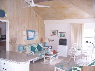Villa Bahama in Treasure Cay, Abaco, Bahamas - Abaco vacation rentals