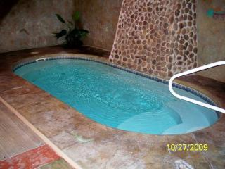 Indoor heated swimming pool - Adorable Teddy Bears Pool Palace - Gatlinburg - rentals