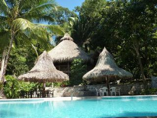 Ceiba Tree Lodge, jungle eco resort in Pico Bonito - La Ceiba vacation rentals