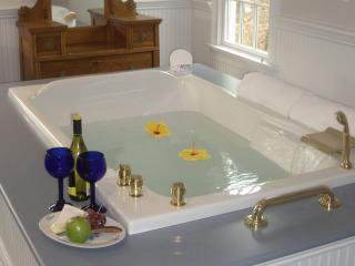 Two person whirlpool.in Carriage Suite