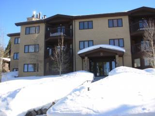Woods Manor Condominiums - Breck- Save $100/night, Breckenridge