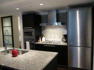 Kitchen Cooking Area - High Grade Stainless Steel Appliances - Luxurious Living in Downtown Victoria - The Falls - Victoria - rentals