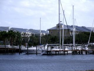 Luxury waterfront  townhome   JULY 17% discount, Ruskin