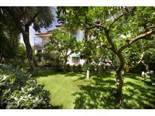 Seafront Villa in Sorrento center, estoning garden, and best location in town. No car needed.