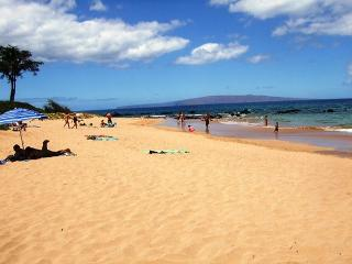 Palms at Wailea #1204 Ocean View, Sleeps 4. $199 THANKSGIVING  SPECIAL!