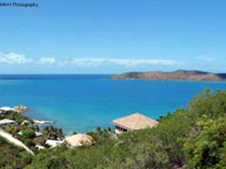 Surrounded by tropical plants and trees, the setting of this villa ensures ultimate privacy. VG SDR, Virgin Gorda