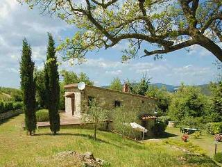 Tuscan Hillside Villas with Views of Vineyards and Olive Groves - Chiantigiana Minore, Gaiole in Chianti