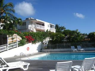 Very bright and comfortable one bedroom apartment, St Jean