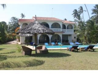 The villa with makuti shades and swimming pool