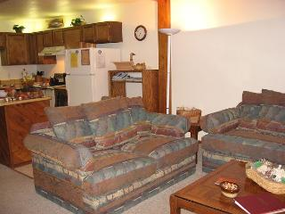 104 J Buffalo Ridge - Ponds - Dillon vacation rentals