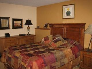 104 BB Buffalo Village Condo. - Dillon vacation rentals