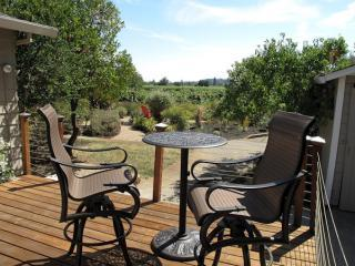 Charming VineHaven in Dry Creek Near Plaza, Healdsburg