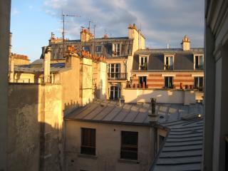 View from the kitchen window. Quintessential Paris!